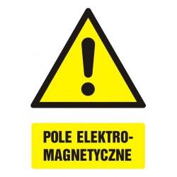 GF002 Pole elektromagnetyczne