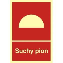 BB006 Suchy pion